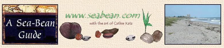 A Sea-Bean Guide