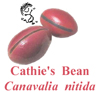 Cathies Bean, Canavalia nitida